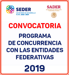 convocatoria concurrencia 2019