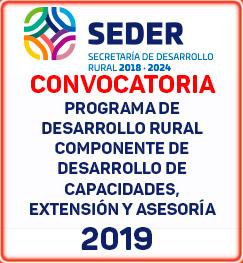 convocatoria capacidades 2019